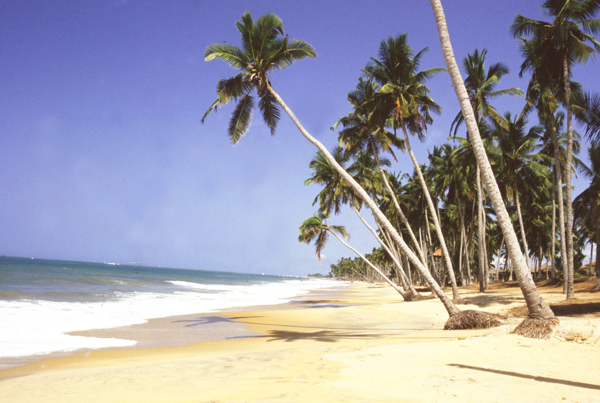 kokrobite beach places to visit in accra ghana